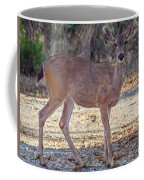 Deer Doe - 2 Coffee Mug