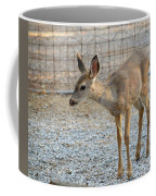 Deer Fawn - 2 Coffee Mug