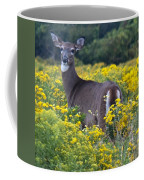 Deer In A Field Of Yellow Flowers Coffee Mug