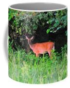 Deer In Overhang Of Trees Coffee Mug