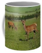 Deers On A Hill Pasture. Coffee Mug