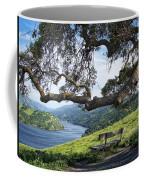 Del Valle Reservoir Coffee Mug