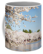 Delicate Blossoms Over The Tidal Basin Coffee Mug