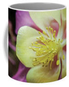 Delicate Columbine Nature Photograph Coffee Mug