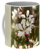 Delicate Gaura Flowers Coffee Mug