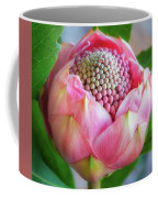 Delicate Pink Bud Waratah Flower Coffee Mug