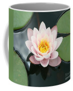 Delicate Waterlily Coffee Mug