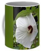 Delicate White Coffee Mug