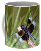 Delicate Wings Of A Dragonfly Coffee Mug