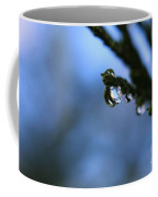 Delighted By Droplets Coffee Mug