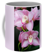 Delightfully Pink Coffee Mug