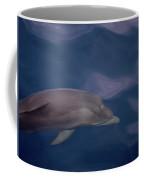Delphin 9 Coffee Mug