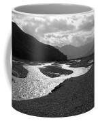Denali National Park 5 Coffee Mug