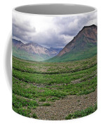 Denali National Park Landscape 3 Coffee Mug