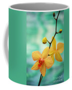Dendrobium Coffee Mug