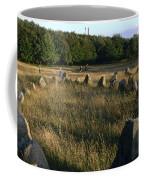 Denmark, Lindholm Hoeje Viking Burial Coffee Mug