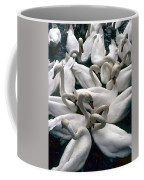 Denmark Swans Gathered On A Lake Coffee Mug
