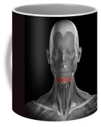 Depressor Labii Inferioris Coffee Mug