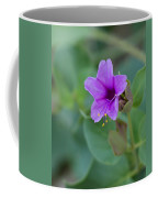 Desert 4 Oclock Coffee Mug