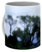 Desert At Night Coffee Mug