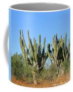 Desert Cacti In Cabo Pulmo Mexico Coffee Mug