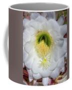 Desert Cactus 668 Coffee Mug