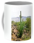 Desert Chaparral Coffee Mug