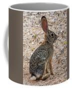 Desert Cottontail 1822 Coffee Mug