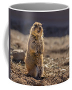 Desert Dawg Coffee Mug