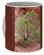 Desert Elements 6 Coffee Mug