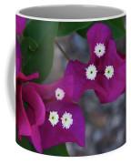 Desert Flower 2 Coffee Mug