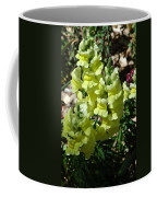 Desert Flowers Virginia City Nevada Coffee Mug