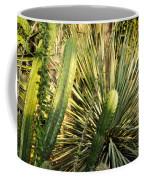 Desert House Magic Hour Coffee Mug