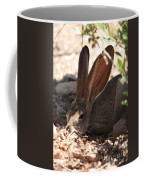 Desert Jackrabbit Coffee Mug