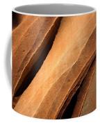 Desert Lines Coffee Mug