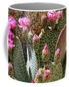 Desert Plants - Fuchsia Cactus Flowers Coffee Mug