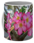 Desert Rose Or Chuanchom Dthb2105 Coffee Mug
