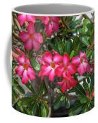 Desert Rose Or Chuanchom Dthb2107 Coffee Mug