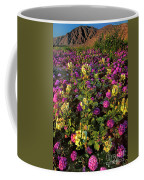 Desert Sand Verbena And Brown-eyed Primrose Below The Coyote Mountains California Coffee Mug