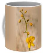 Desert Senna In Spring Coffee Mug