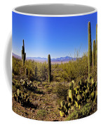 Desert Spring Coffee Mug by Chad Dutson