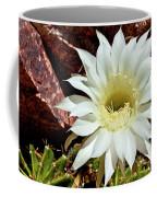 Desert Star Coffee Mug