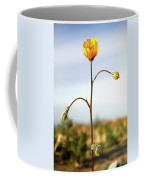 Desert Sun Flower Coffee Mug