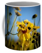 Desert Sunflower Variations Coffee Mug