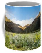 Desert View Coffee Mug