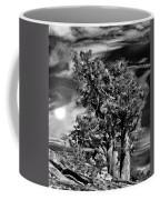Deserted Tree Coffee Mug