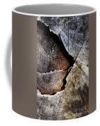 Detail Old Sawn Stump Coffee Mug