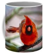 Determined Cardinal  Coffee Mug