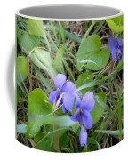 Dew Covered Wild Violets Coffee Mug