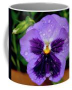 Dew Drop Butterfly Coffee Mug